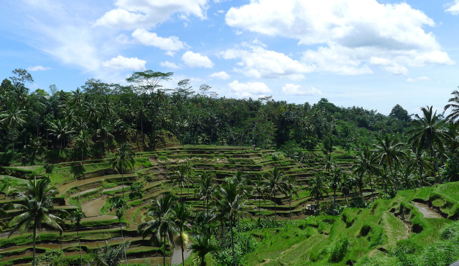Indonesia_2