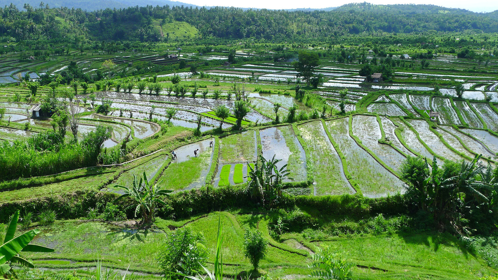 Candidasa East Bali