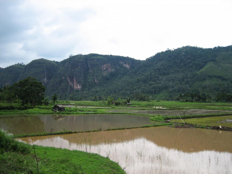 Indonesia_35