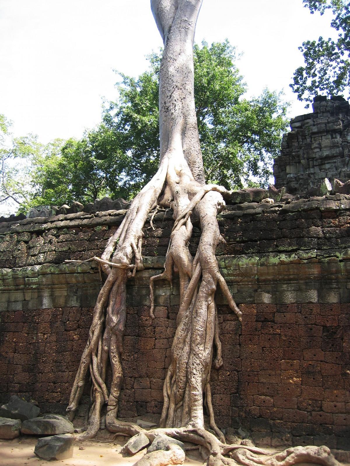 Cambodia_Thailand_12